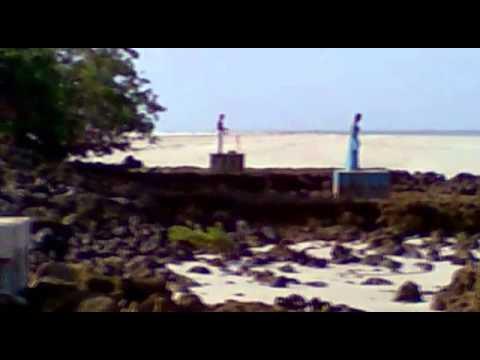 Expedição à Ilha de Fortaleza