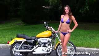 3. 2006 Harley Davidson XL1200C Sportster 1200 Custom for sale Specs Review