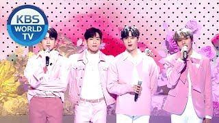 Video Jinyoung, Minhyuk, JaeHyun, Hwang Minhyun - You are so beautiful[2018 KBS Song Festival /2018.12.28] MP3, 3GP, MP4, WEBM, AVI, FLV Januari 2019