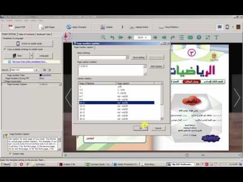 Flip PDF Professional tutorial
