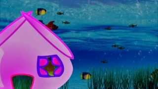 Где спит рыбка. Следы животных
