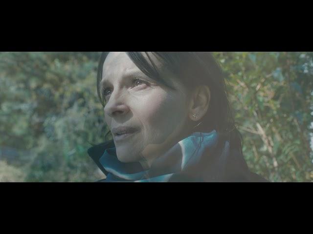 trailer Vision