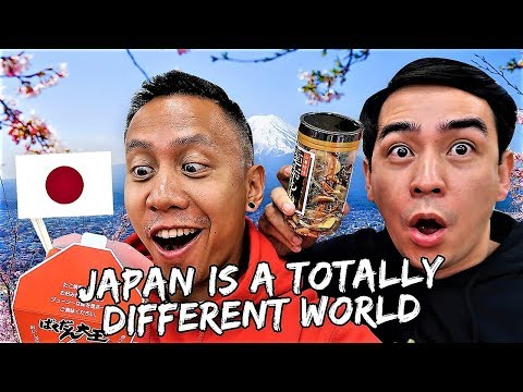 Japan: A Totally Different World! | Vlog #435