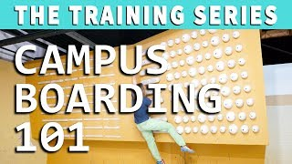 Campus Boarding 101: 4 Exercises to Get Started on a Campus Board by Verticalife