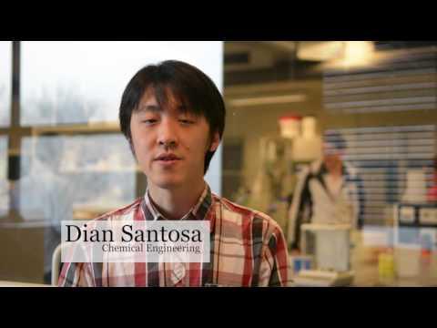 Testimonial van Dian Santosa