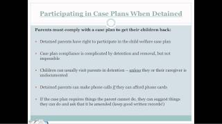 Parental Rights At Risk: Strategies For Preserving Family Unity In The Face Of Detention And Removal