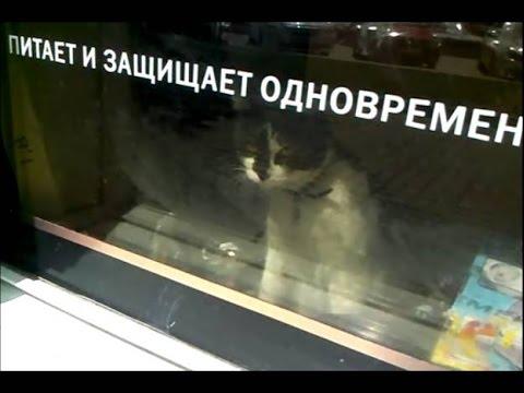 Он вам не ответит...)))