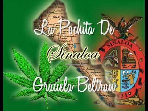 Pochita - La Pochita de Sinaloa (Graciela Beltran) 100% Sinaloense Raza! Aki siempre al Millon y ke siga Rugiendo SINALOA!!!!