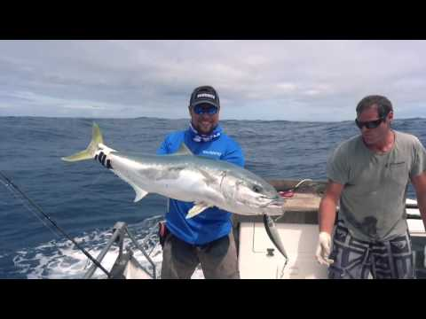 Angeln in Neuseeland: Ranfurly Banks/Neuseeland 2016 - Extreme Kingfish Action