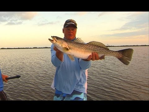 Addictive Fishing – Big TROUT fishing on topwater plugs