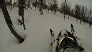 9. 2012 Arctic Cat Proclimb M8 Tree Riding GoPro3