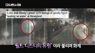 Video [서프라이즈] 디즈니랜드에 나타난다는 의문의 유령? MP3, 3GP, MP4, WEBM, AVI, FLV Agustus 2018