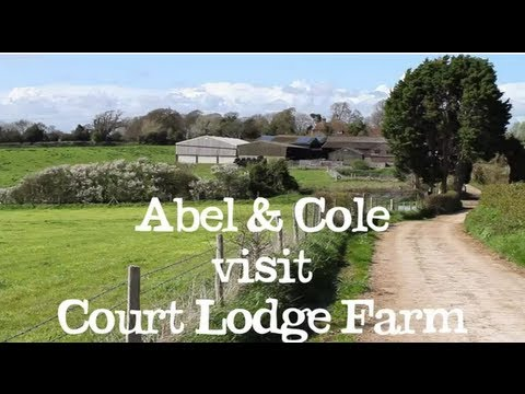 Court Lodge Farm