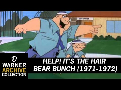 Help! It's the Hair Bear Bunch! (Theme Song)
