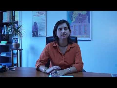 Saludo de la Directora Ejecutiva de Rimisp, Ignacia Fernández