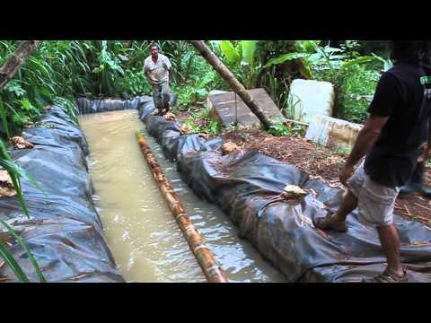 guadua - Video que documenta el primer taller de manejo y uso sustentable en el trópico de la Guadua angustifolia en junio de 2010 en Utuado, Puerto Rico. El taller f...