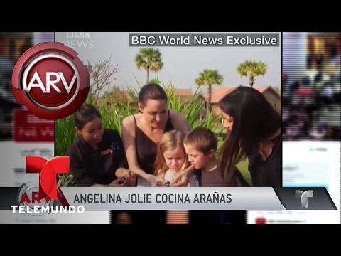 Angelina Jolie come arañas y escorpiones y se los da a sus hijos