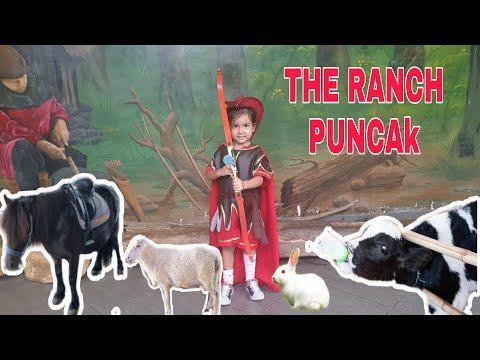 The Ranch Puncak Cisarua 2020 || naik kuda
