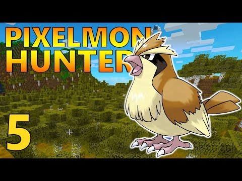 [5] Synchronize Team Assemble! Pidgey Hunt! (Pixelmon Reforged Gameplay S2)