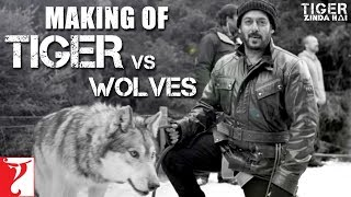 Tiger vs Wolves | Making of Tiger Zinda Hai | Salman Khan | Katrina Kaif | Ali Abbas Zafar