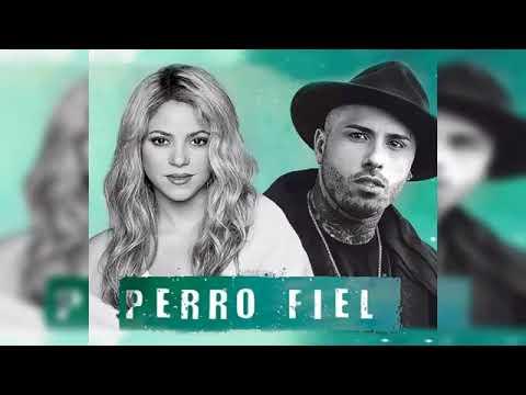 Perro Fiel - Shakira Ft. Nicky Jam (Audio Oficial) - Video