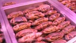 Sea Food Restaurant And Market - Bangkok 2008
