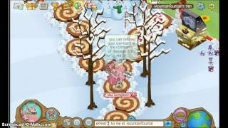 ANIMAL JAM FREE ARCTIC WOLF 3 MONTH MEMBERSHIP!!! NO PASSWORDS OR ITEMS OR DOWNLOADS NEEDED!!!