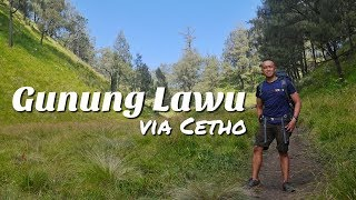 Download Video GUNUNG LAWU VIA CETHO (SOLO HIKING) | VLOG #7 MP3 3GP MP4