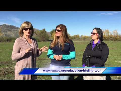 Eastern Municipal Water District Birding Tours