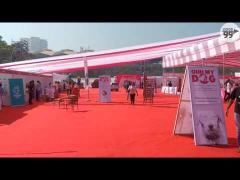 Glam Dogs 2017 | Show SetUp | Versova Mumbai | Dogs99.com
