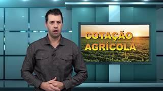 Capa do vídeo Agroleite reúne o que há de mais moderno na produção leiteira