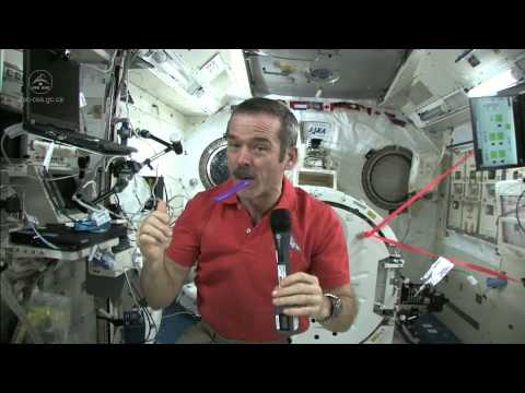 Teeth - ISS commander Chris Hadfield explains how astronauts maintains oral hygiene aboard the International Space Station.