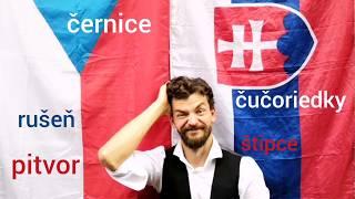 Video Dušan Vitázek - DRUKA  (official lyric video)