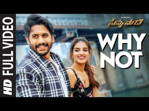 Why Not Full Video Song - Savyasachi Video Songs | Naga Chaitanya, Nidhi Agarwal | MM Keeravaani