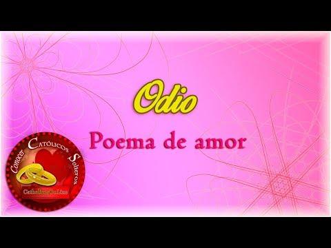 Poemas cortos - Odio - Poema de amor