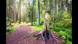 Hochenschwand Germany  city images : Best of Schwarzwald