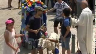 Sfilata dei carri festa Sant'Antonio 2017