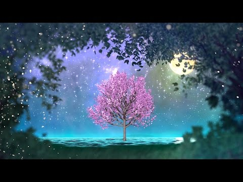 2 hours of peaceful, relaxing, nature instrumental music: \