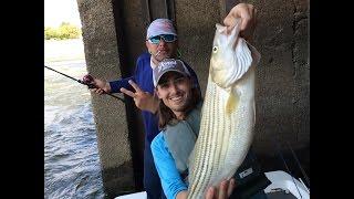 Video Striper Fishing Beatdown at the Pickwick Dam MP3, 3GP, MP4, WEBM, AVI, FLV Oktober 2018