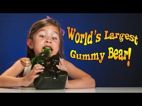 4-year-old Devours WORLD'S LARGEST GUMMY BEAR! (видео)