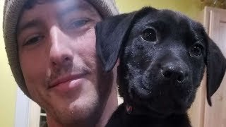 Deaf Man Adopts Puppy Who Can't Hear, Then Teaches Him Sign Language by Did You Know Animals?