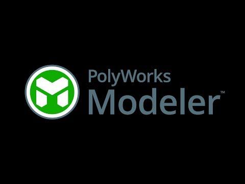 PolyWorks Modeler