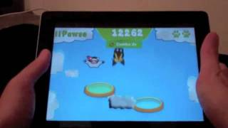 Stunt Cat! YouTube video
