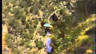 Wollomombi Australia  city images : Base Jump Wollomombi Falls 1987