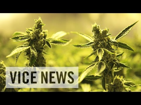 Inside America s 27 Billion USD Marijuana