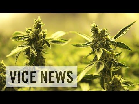 Inside America s 27 Billion USD Marijuana
