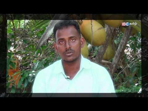 En Iname En Saname   என் இனமே என் சனமே   Ep 24   Part 02   IBC Tamil TV