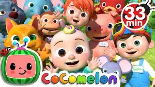 Video My Name Song | +More Nursery Rhymes & Kids Songs - Cocomelon (ABCkidTV) MP3, 3GP, MP4, WEBM, AVI, FLV Agustus 2018