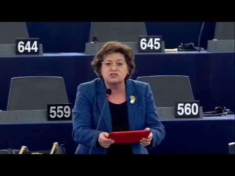 Ana Gomes debate como enfrentar os movimentos de refugiados e de migrantes