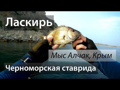 крым рыбная ловля  из берега